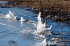 marsh-ice