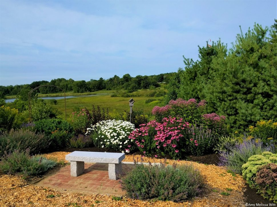 TW pollinator garden e1587577101289 - TW pollinator garden