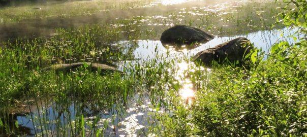 lake 604x270 - Restore Yourself through Nature