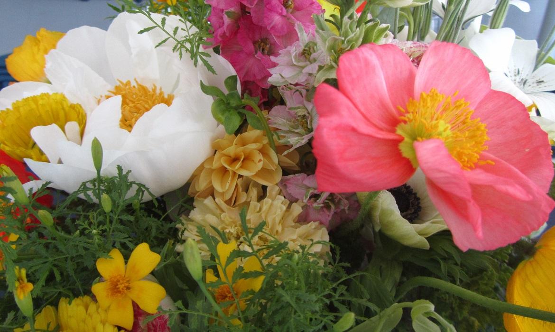 flowers2 - flowers2